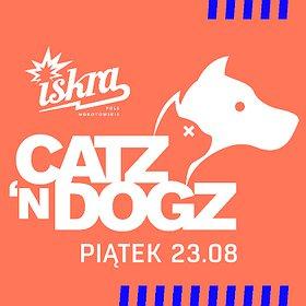 Muzyka klubowa: Catz 'n Dogz
