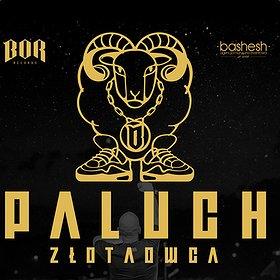 Koncerty: Paluch - Łódź