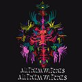 All Them Witches - Poznań