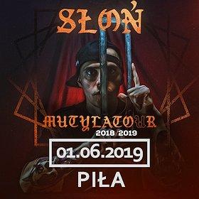 Hip Hop / Reggae: Słoń