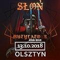 Słoń - Olsztyn