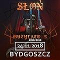 Słoń - Bydgoszcz
