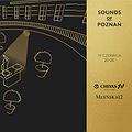 Imprezy: Sounds of Poznań, Poznań