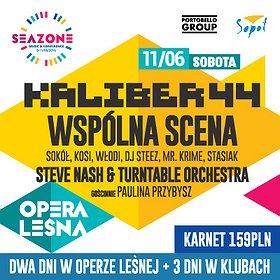 Koncerty: Kaliber 44 / Steve Nash & Turntable Orchestra / Wspólna Scena / SeaZone 2016