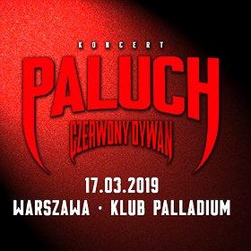 Concerts: Paluch - Warszawa