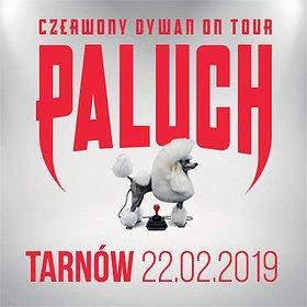 Koncerty: Paluch - Tarnów