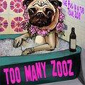 Too Many Zooz - Kraków