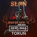 Słoń - Toruń