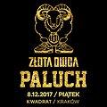 Koncerty: Paluch - Złota Owca - Kraków, Kraków