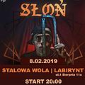 Koncerty: Słoń - Stalowa Wola, Stalowa Wola