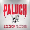 Paluch - Szczecin
