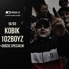 Koncerty: KOBIK & 102 BOYZ