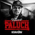 Paluch - Kraków