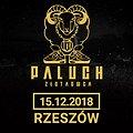 Paluch - Rzeszów