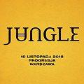 Koncerty: Jungle, Warszawa