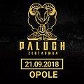 Koncerty: Paluch - Opole , Opole
