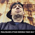 Koncerty: PEJA/SLUMS ATTACK REMISJA TOUR 2017, Gorlice