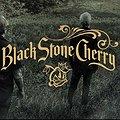 Koncerty: Black Stone Cherry, Warszawa