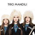 Koncerty: Trio Mandili, Warszawa