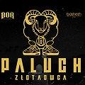 Koncerty: Paluch Poznań  - II TERMIN, Poznań
