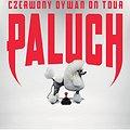 Hip Hop / Reggae: Paluch - Warszawa, Warszawa