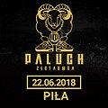 Concerts: Paluch - Piła, Piła