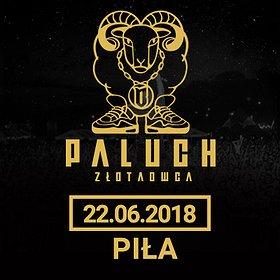 Koncerty: Paluch - Piła