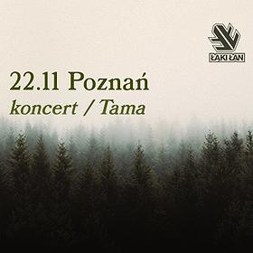 Pop / Rock: Łąki Łan - Poznań - 22.11