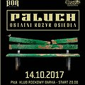 Koncerty: Paluch - koncert w Pile, Piła
