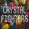 Koncerty: Crystal Fighters, Warszawa
