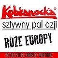 Koncerty: KOBRANOCKA, RÓŻE EUROPY, SZTYWNY PAL AZJI, Zabrze