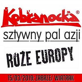 Concerts: KOBRANOCKA, RÓŻE EUROPY, SZTYWNY PAL AZJI