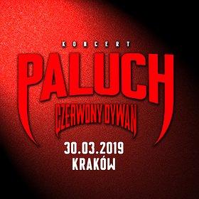 Koncerty: Paluch - Kraków