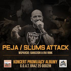 Hip Hop / Reggae: Peja/Slums Attack 22/11/19, Protokultura
