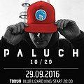 Koncerty: Paluch - Toruń, klub Lizard King, Toruń