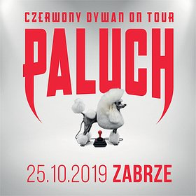 Paluch - Zabrze