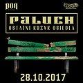 Paluch - Słupsk