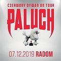 Hip Hop / Reggae: Paluch - Radom, Radom