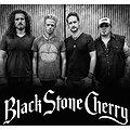 Koncerty: Black Stone Cherry - Poznań, Poznań