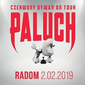 Koncerty: Paluch - Radom