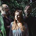 Koncerty: Mikromusic Acoustic Trio, Sopot