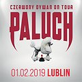 Concerts: Paluch - Lublin, Lublin