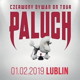 Koncerty: Paluch - Lublin